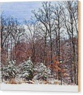 A Winters Scene Wood Print