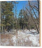 A Winters Walk Wood Print