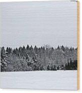 A Wintery Scene Along Goode Street Wood Print