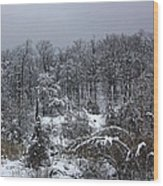 A Wintery View At The United States Military Academy Wood Print