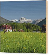 A Woman Walks Through An Alpine Meadow Wood Print