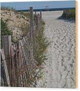 A Wonderful Beachday On Cape Cod Wood Print
