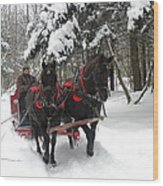 A Wonderful Day For A Sleigh Ride Wood Print