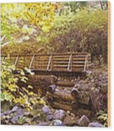 A Woodsy Walk In Golden Fall Color Wood Print