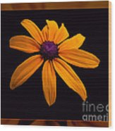A Yellow Burst Of Sunshine Floral Photography Wood Print