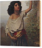 A Young Gypsy Woman With Tambourine  Wood Print