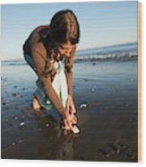 A Young Woman Collects Seashells Wood Print
