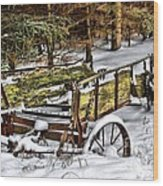 Abandoned In The Snow Wood Print