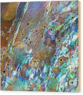 Abalone Abstract3 Wood Print