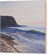 Abalone Cove Wood Print