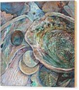 Abalone Grouping Wood Print