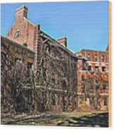 Abandoned Asylum Wood Print by Bill Cannon