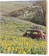 Abandoned Ford Buried In Wildflowers Wood Print