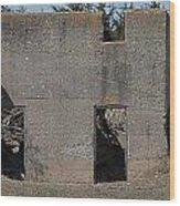 Abandoned Foundation 1 Wood Print