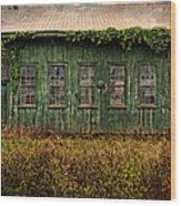 Abandoned Green Sugar Mill Building Dsc04353 Wood Print