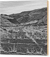 Abandoned Highway - Yakima County - Washington Wood Print