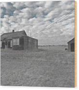 Abandoned Homestead Series Selective Color Wood Print