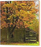 Abandoned In The Country Wood Print