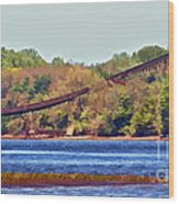 Abandoned On The Delaware River Wood Print
