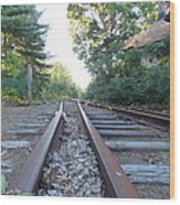 Abandoned Railroad 1 Wood Print