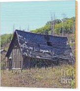 Abandoned Relic II Co Wood Print