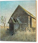 Abandoned Root Cellar Wood Print