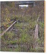 Abandoned Tracks Wood Print