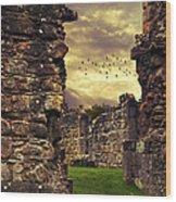 Abbey Ruins Wood Print