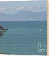 Abel Tasman Split Apple Bay New Zealand Wood Print