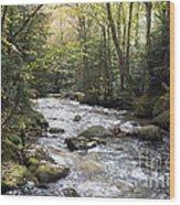 Abol Falls 4368 Wood Print
