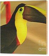 About A Beak  Wood Print
