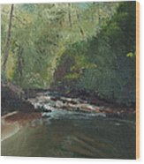 Above Bald River Falls Wood Print by William Killen