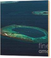 Above Paradise - Turtle Wood Print