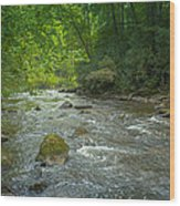 Abram's Creek Gsmnp Wood Print
