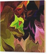 Abstract 012014 Wood Print