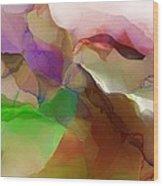 Abstract 030213 Wood Print