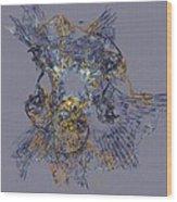 Abstract 101913 Wood Print
