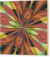 Abstract 162 Wood Print