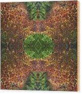 Abstract 164 Wood Print