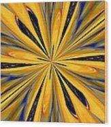 Abstract 227 Wood Print