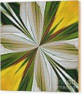 Abstract 296 Wood Print