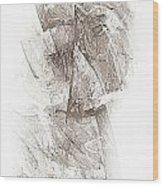 Abstract 400-08-13 Marucii Wood Print