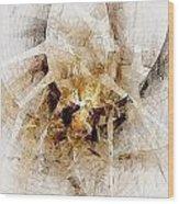 Abstract 414-08-13 Marucii Wood Print