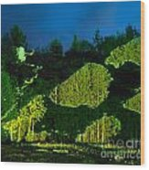 Abstract Art Projection Over Night Nature Scenery Wood Print