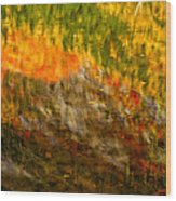 Abstract Autumn Reflections  Wood Print