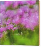 abstract Blurry pink flower background for backgrounds Wood Print