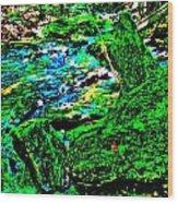 Abstract Brook Bits 56 Wood Print