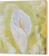 Abstract Calla Lily Wood Print