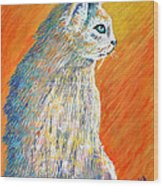 Jazzy Abstract Cat Wood Print
