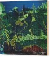 Abstract Colorful Light Projection On Trees Wood Print